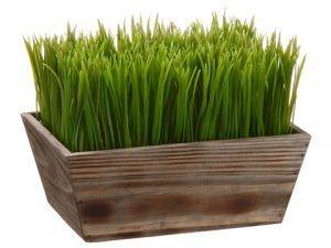 """8""""H x 7""""W x 10""""L Grass in WoodPlanterGreen"""