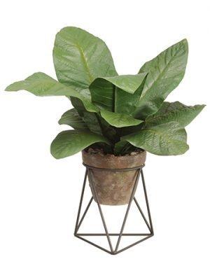"20""tropical Leaf Plant in Terra Cotta Pot With Stand Green"