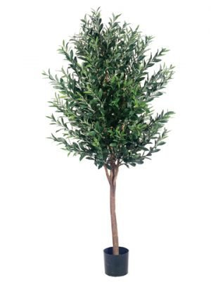 5' Olive Tree w/2560 Leaves in Pot Two Tone Green