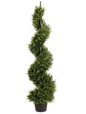 4' Rosemary Spiral Topiary in Pot Green