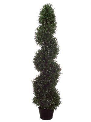 4' Rosemary Spiral Topiary inPlastic PotGreen