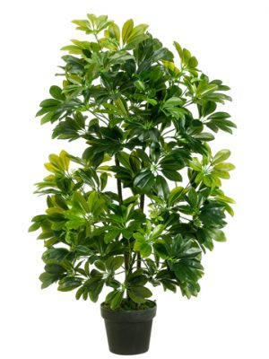 "40"" EVA Schefflera in Black Plastic Pot Green"