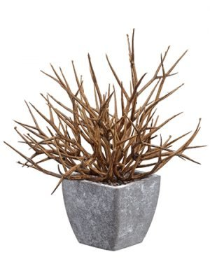 "8"" Twig in Paper Mache Pot Brown Gray"