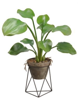 "26"" Water Hyacinth Leaf Plant in Terra Cotta Pot With Stand Green"