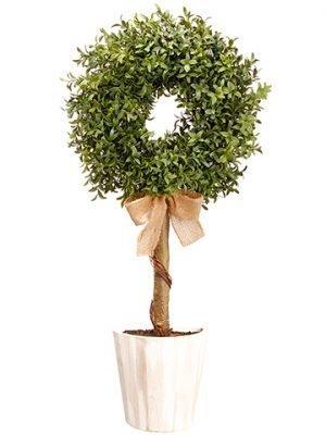 "30"" Boxwood Wall Topiary inPotGreen"