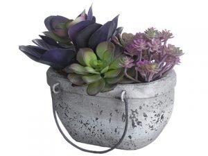 """7.5"""" Succulent Garden inTerra Cotta PlanterGreen Purple"""