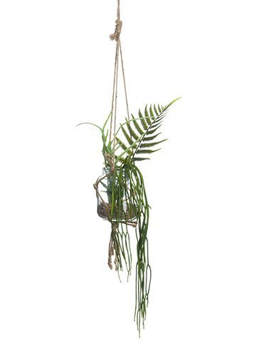 "12"" Hanging Succulent Garden in Glass Vase Green"