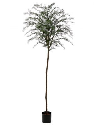 7.5' Plastic Taxus Thayerae Tree with 340 Leaves Green