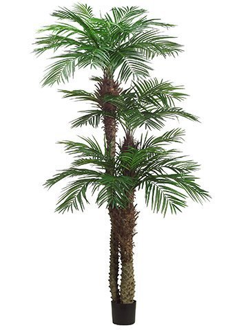 9'+7'+5' Tropical Areca PalmTree x3 with 1364 Leaves inPot (knock-down packing) Green