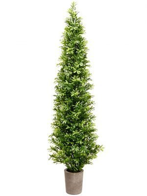 "35"" Podocarpus Topiary Tree in Cement Pot Green"