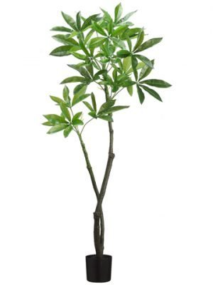 4' EVA Pachira Aquatica Tree Green