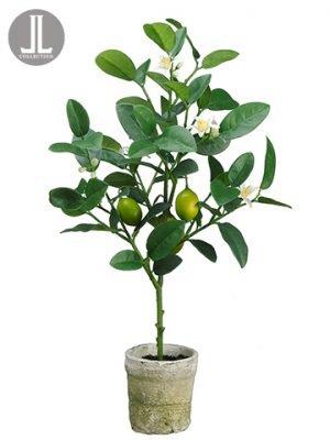 "22"" Lemon Topiary in Clay Pot Yellow Green"