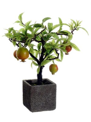 "14"" Pomegranate Tree in Cement Pot Red Green"