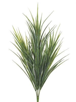 "33"" Dracaena Bush w/145 Leaves Green White"