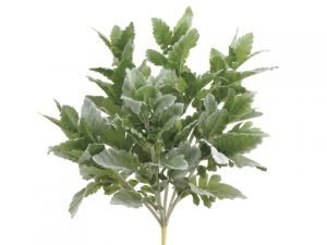 "16.5"" Dusty Miller Bush Frosted Green"