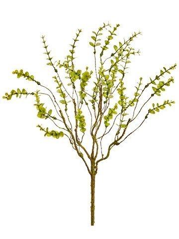 "19"" Mini Eucalyptus Bush x5 Green"