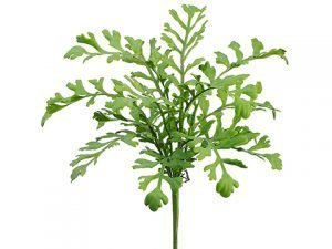 "17"" Miller Fern Bush Green"