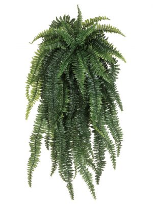"52"" Weeping Boston Fern Hanging Bush x55 Light Green"