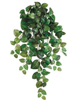 "32"" Round Swedish Ivy Hanging Bush x10 w/173 Leaves Green"