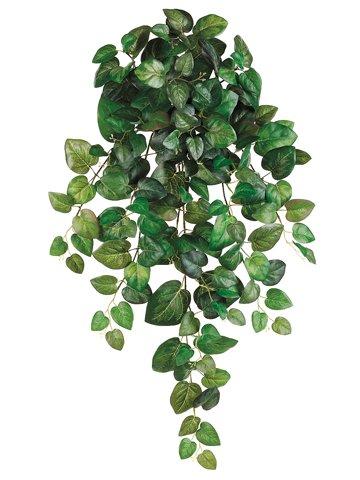 "32"" Round Swedish Ivy HangingBush x10 w/173 LeavesGreen"