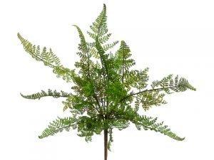 """15"""" Leather Fern Bush Green"""