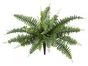 "18"" UV Protected Boston Fern Bush Green"