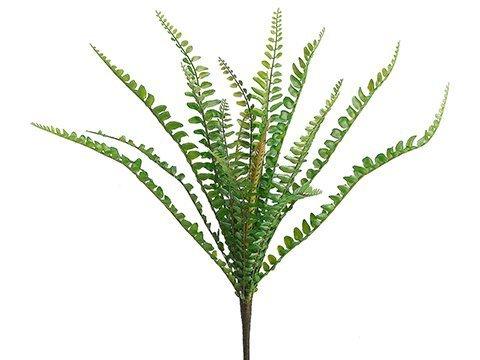 "11"" Sword Fern Bush Green"