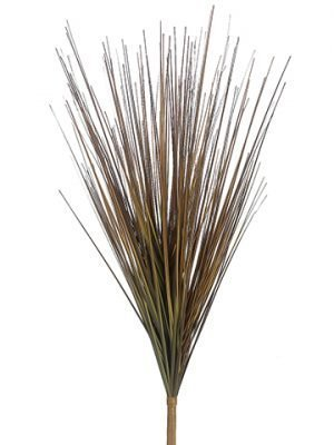 "26"" Onion Grass Bush Rust"