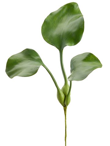 """17"""" Water Hyacinth Leaf Plantx3Green"""