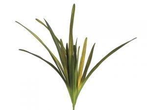 """32"""" Flax Leaf Bush x3 Green"""