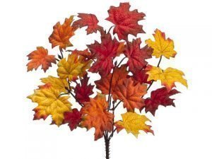 "13"" Maple Leaf Bush x6 Flame Orange"