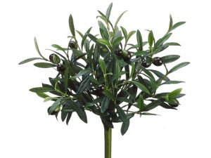 "14"" Olive Bush Green"