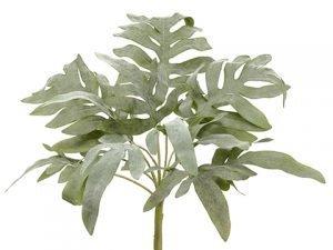 "16"" Split Philodendron Bushx13Green Gray"