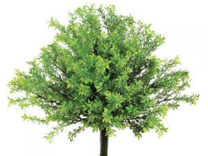 "15"" Plastic Tea Leaf Bushwith 300 LeavesGreen"
