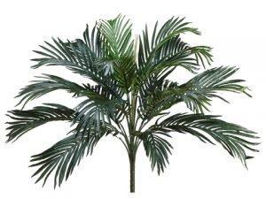 """29"""" Phoenix Palm Bush x18 Green"""