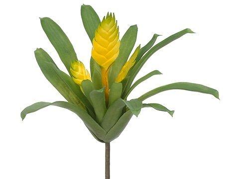 "12"" Tillandsia Bush Yellow"