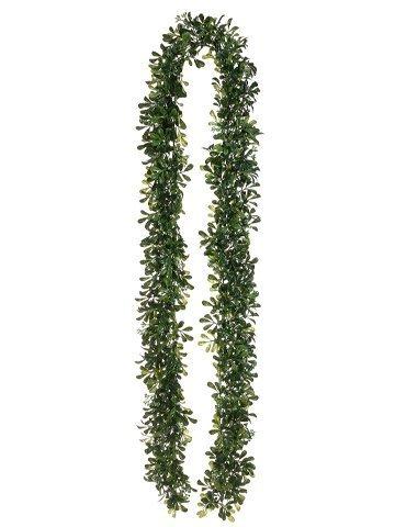 6' Boxwood Garland Green Two Tone