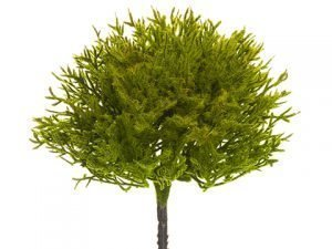 "7.5"" Juniper Pick Moss"