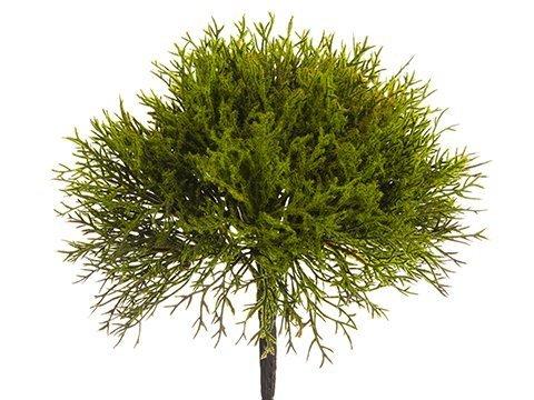 "10"" Juniper Pick Moss"
