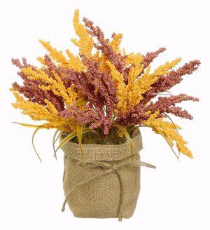 Harvest seeded millet in burlap bag