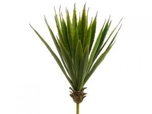 "15""H x 8""D Spiky Aloe Plant Green"