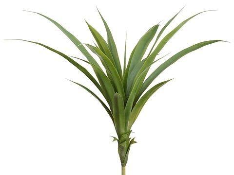"""26"""" Dracaena Plant Green"""