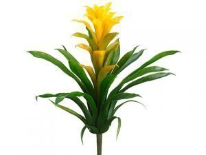 "14"" Bromeliad Plant Yellow Green"