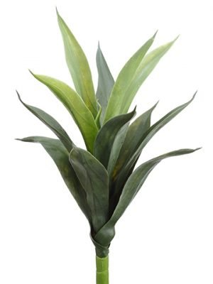 """19"""" Aloe Branch Green Frosted"""