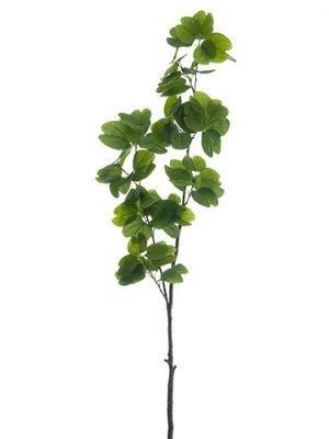 "61.5"" Bauhinia Leaf BranchGreen"
