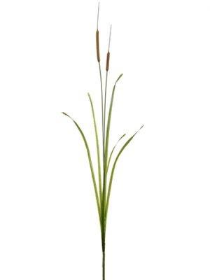 """68.5"""" Cattail Grass SprayBrown Green"""