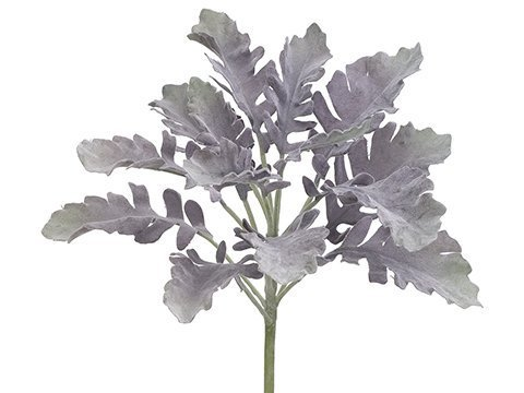 "12"" Dusty Miller SprayGreen Purple"