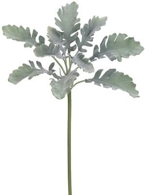 "19"" Dusty Miller Spray  Green Gray"