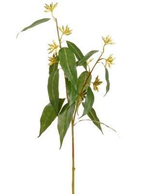 """29.5"""" Giant Eucalyptus SprayGreen Yellow"""