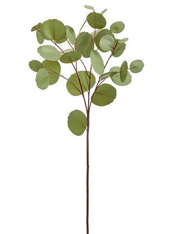 "26.5"" Eucalyptus Leaf SprayGreen Gray"